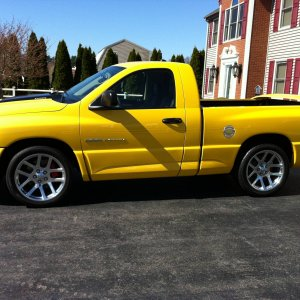 2005 Yellow Fever Edition !